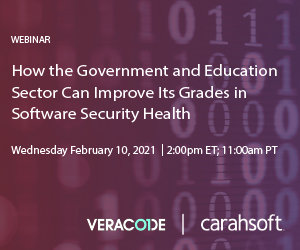 Veracode-SoftwareSecurity-Feb10